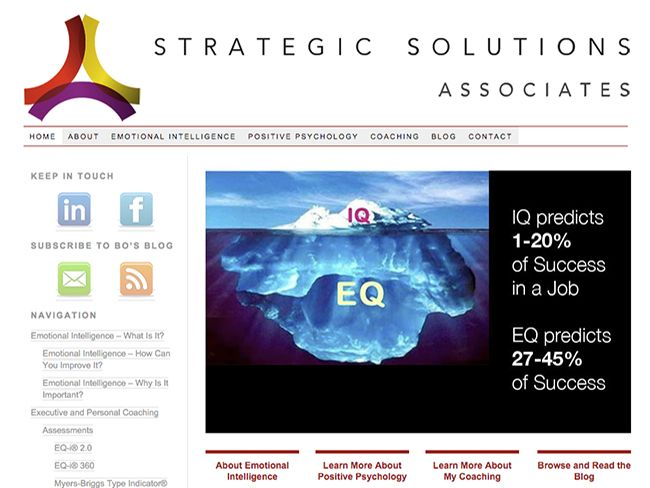 Strategic Solutions Associates portfolio screenshot