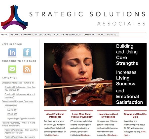 Strategic Solutions Associates Website - Designed and Developed by Mike Nichols